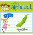 Flashcard letter V is for vegetable vector image vector image