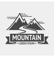 Mountain exploration vintage logos emblem vector image vector image