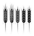 set of monochrome spikelets for scenery vector image vector image