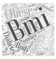 A Healthy BMI for Diabetics Word Cloud Concept vector image vector image