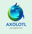 axolotl vector image vector image