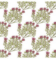 colored wild thyme seamless pattern hand drawn vector image