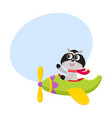 cute funny raccoon pilot character flying on vector image vector image