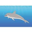 dolphin ocean vector image vector image