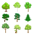 Realistic Trees Set vector image vector image