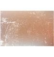 Distress Beige Texture vector image