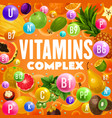 fruits rich of vitamins and minerals vector image vector image