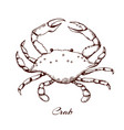 blue crab seafood design element sea vector image