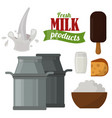 Dairy milk products organic drink healthy cream vector image