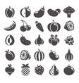 Gray icons set vector image vector image