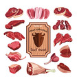 hand drawn meat elements set vector image vector image