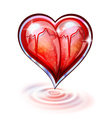 heart glass vector image vector image
