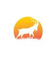 ibex and deer logo designs simple vector image