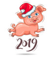 little cute piggy in santas hat 2019 new year vector image