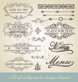 menu calligraphic design element vector image vector image