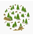 Pine tree forest vector image