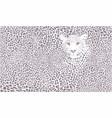 raster leopard background vector image