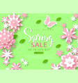spring sale banner beautiful background with vector image
