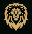 gold lion head golden logo mascot vector image vector image