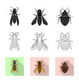 isolated object of insect and fly sign collection vector image vector image
