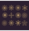 Set of 12 abstract snowflakes vector image vector image