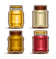 set of glass different jars vector image vector image