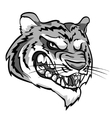 Tiger mascot team label design vector image vector image