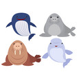 sea animals on white background vector image