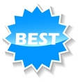 Best blue icon vector image vector image