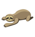 cartoon sloth sloth vector image vector image