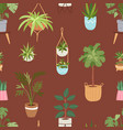 house indoor plants and nature homemade vector image vector image