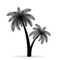 palm tree silhouette 05 vector image vector image