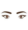 white background with female eyes and eyebrows vector image vector image