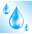Water drops isolated vector image