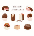 chocolate coated marshmallowand cakes in cartoon vector image vector image