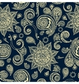 Ethnic pattern with mandala cucumbers paisley