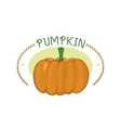 Fresh orange pumpkin badge isolated vector image