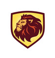 lion head logo shield template vector image vector image