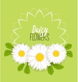 Meadow flower wreath vector image
