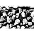 sea stones background black and white vector image vector image