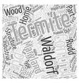 Termite Control in Waldorf Maryland Word Cloud vector image vector image