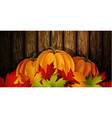 the of pumpkins vector image vector image