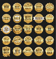 big sale retro golden badges and labels vector image vector image