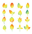 colorful gradient leaf silhouettes vector image