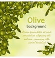 Olive oil background vector image vector image