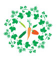 organic vegetables herbal ornament frames vector image vector image