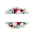 red and white rose branches frame border vector image