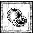 Retro tomato black and white vector image vector image
