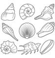 Seashell Set vector image vector image