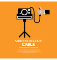 Shutter Release Cable vector image vector image